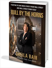 bull_by_the_horns_cover