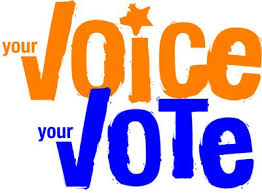 your voice your vote