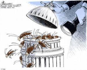 Congress roaches-2013