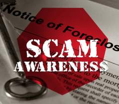 scamms-